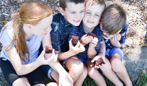 Group of children eating Organic Times brownies